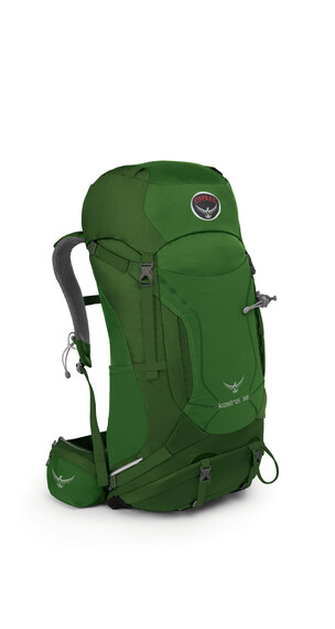 Osprey Kestrel 38 Backpack Men Jungle Green